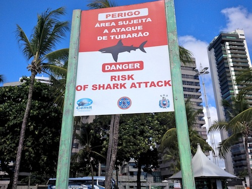 Sharks Warning